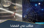 عناكبُ في الفضاء